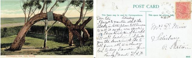 Figure 5: Post Card from Honor Alice (Bailey) Flavel to Edith Margaret (Solly) Muir, 20 April 1907. [Dear EDie - I forgot to mention about the saddle in the letter. Please tell Duncan to sell it as you were soeaking of. I hope he is better of his cold. All well here hoping it finds you the same. With love to all from all. It is showery here today. I remain your loving parents. H.A.FFigure 5: Post Card from Honor Alice (Bailey) Flavel to Edith Margaret (Solly) Muir, 20 April 1907. [Dear Edie - I forgot to mention about the saddle in the letter. Please tell Duncan to sell it as you were soeaking of. I hope he is better of his cold. All well here hoping it finds you the same. With love to all from all. It is showery here today. I remain your loving parents. H.A.F]