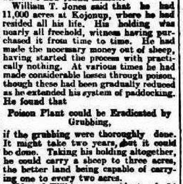 Figure 2: The West Australian 31 March 1905